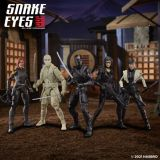 GIJ-CS-Snake-Eyes-Group